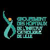 Logo Groupement des hopitaux